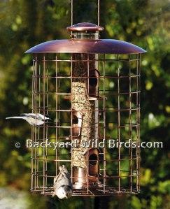 Copper-Squirrel-Proof-Bird-Feeder